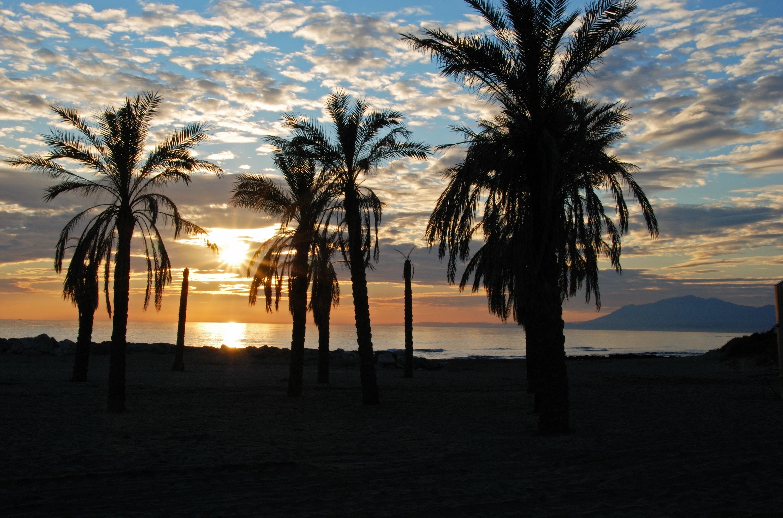 marbella beach, marbella direct